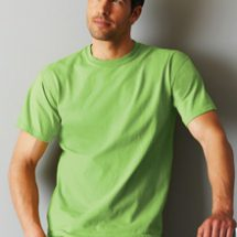 Ultra Cotton Adult T Shirt