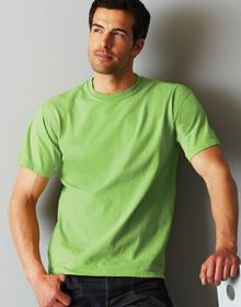 Ultra Cotton Adult T Shirt